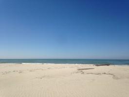 «Душевые кабинки и летнее кафе»: власти Зеленоградска обустроят пляж в посёлке Лесной