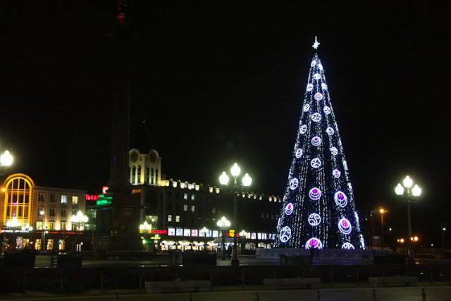 ВКалининграде начали устанавливать кНовому году главную елку