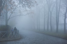 «Город во мгле»: Калининград накрыл густой туман