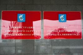 Документы от претендентов на пост мэра Калининграда начнут принимать 3 ноября