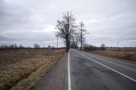 В областном УГИБДД рассказали, где будут стоять переносные радары до 28 октября