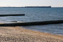 Архангельская компания займётся корректировкой проекта порта в Пионерском за 72 млн рублей