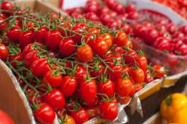 «Дешёвый сыр и дорогие овощи»: как и почём торгуют санкционкой в Калининграде