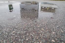 Синоптики прогнозируют дождливые и ветреные выходные в Калининградской области