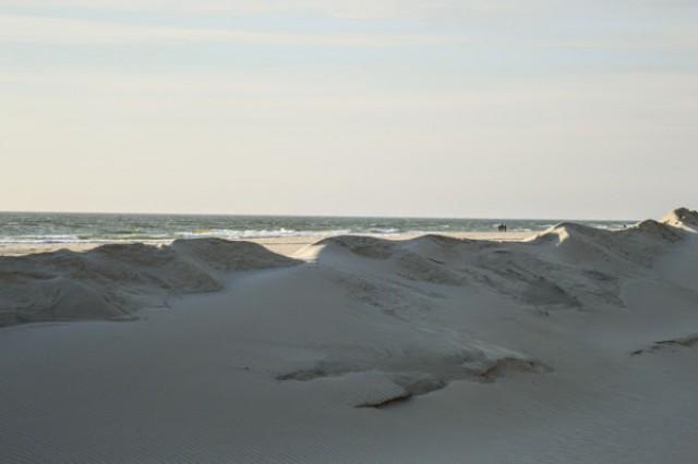 В столице Литвы в июне откроют нудистский пляж