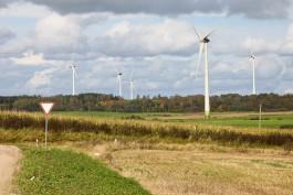 В Калининградской области объявили конкурс на реконструкцию ветропарка