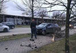 На Портовой в Калининграде «Хёндай» после столкновения вылетел на тротуар и снёс дерево