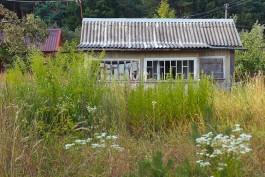 Исследование: Дачный домик на шести сотках в регионе стоит 2,2 млн рублей