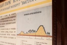 В башне на Куршской косе планируют открыть музей со смотровой площадкой