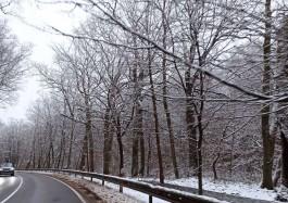 В последние праздничные выходные в Калининградской области ожидается снег с дождём