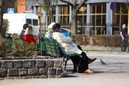 Мэрия: Почти треть населения Калининграда составляют пенсионеры