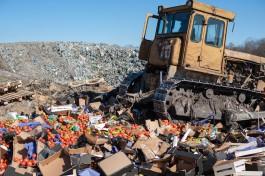 В 2017 году Россельхознадзор уничтожил в Калининградской области более 30 тонн продуктов