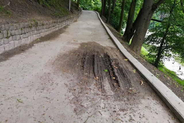 Власти Калининграда придумали, как защитить склоны на Нижнем озере от сильных дождей