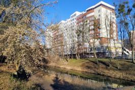 Сбер выдал более 6 млрд рублей по льготной ипотеке в Калининградской области