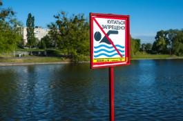 Депутаты Облдумы планируют ввести штрафы за купание в запрещённых местах