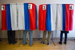 В Калининграде проверяют сообщение о подкупе избирателей