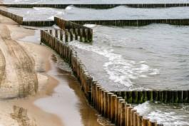Подрядчик: Продольные буны в Светлогорске должны покрыться песком за несколько сезонов