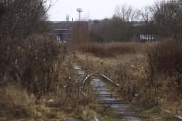 Правительство изымает 19 участков для строительства Восточной эстакады