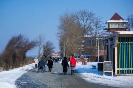 «Сибирь, Москва и Север»: откуда переезжали в Калининградскую область в 2020 году
