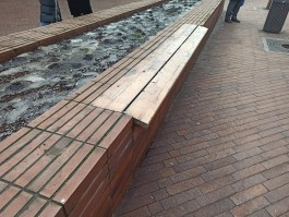 Дятлова пообещала отремонтировать пешеходные зоны Калининграда после зимы