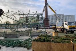 На площади Победы в Калининграде устанавливают новогоднюю ёлку