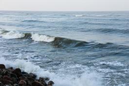 В Калининградской области ожидается усиление ветра до 16 метров в секунду