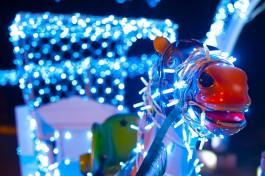 В Калининграде раздадут 440 тысяч рублей за лучшее новогоднее оформление зданий