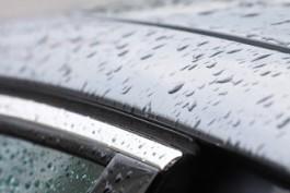 В выходные в Калининградской области ожидается до +5°C и небольшие дожди