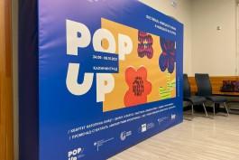 «Концерты, выставки, кино»: в Калининграде открывается фестиваль немецкого языка и культуры