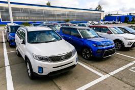 Исследование: Только 23% калининградских семей могут купить автомобиль за 550 тысяч рублей