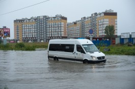 Власти Калининграда увеличивают количество маршруток на Сельму