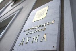 «Две трети от ЕР»: кто прошёл в Калининградскую областную думу