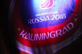 С 1 июня начнётся набор волонтёров на Кубок Конфедераций-2017 и ЧМ-2018