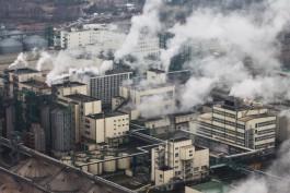 Компания из Калининграда хочет построить в Приморье терминал и завод по переработке сои