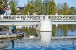 АТОР: Туры на майские праздники в Калининград сильно подешевели