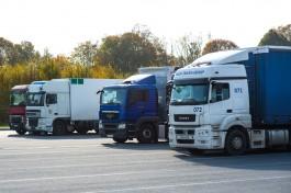 В регионе возникли проблемы с пропуском грузов через таможню из-за сокращения штата Россельхознадзора