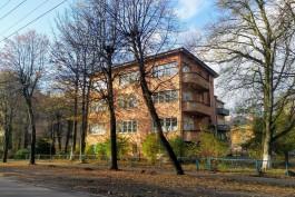 В Калининграде закупают акустический томограф для исследования деревьев
