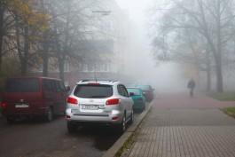 ГИБДД предупреждает водителей о тумане и гололедице на дорогах Калининградской области