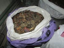 Житель региона пытался незаконно вывезти в Литву 10 кг янтаря