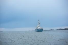 Балтфлот усилят шестью кораблями «Каракурт» с «Панцирями» и «Калибрами»