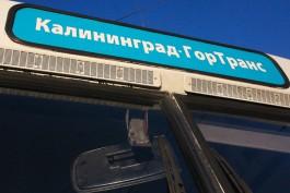 Власти Калининграда планируют сократить в 2017 году дотации «Калининград-ГорТрансу»