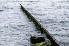 Отдыхающие нашли на пляже в Светлогорске тело 33-летней женщины