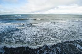В порту Клайпеды произошла утечка нефтепродуктов