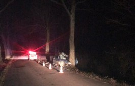 В Гурьевском округе пьяный водитель врезался в дерево: пострадали четыре человека