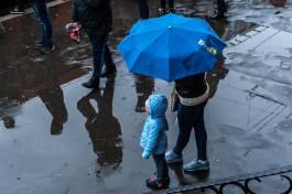 Метеорологи обещают прохладную и дождливую рабочую неделю в Калининградской области