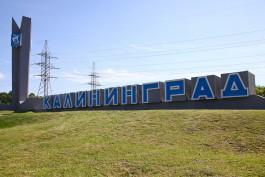 «Базграничный Калининград, потрясный главарх и восьмирукий губернатор»: впечатления минувшей недели