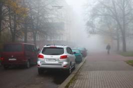 ГИБДД предупреждает водителей о гололедице и тумане на дорогах Калининградской области