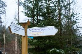 В Виштынецком парке снесли гостевой дом на месте дачи Геринга