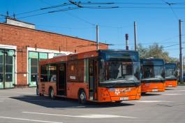 В Калининграде автобусы начали ходить по мостам на Остров