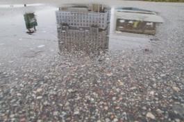 В выходные в Калининградской области ожидаются дождь и снег